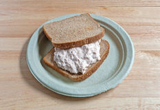 Tuna sandwich on paper plate Royalty Free Stock Images