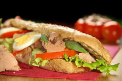 Tuna sandwich Stock Images