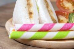The Tuna sandwich Royalty Free Stock Photography