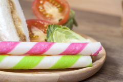 The Tuna sandwich Royalty Free Stock Image