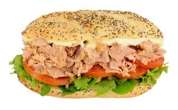 Tuna Sandwich In A Seeded Bread Roll Royalty Free Stock Image