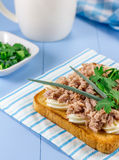 Tuna sandwich on toasted bread. Tuna fish sandwich on toasted bread Stock Photo