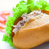 Tuna sandwich with tomatoes and salad. Stock Photography