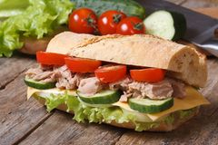 Tuna sandwich with vegetables on background of ingredients. Royalty Free Stock Photos