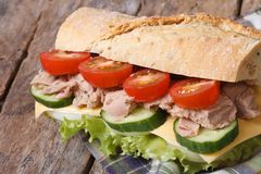 Tuna sandwich with vegetables and cheese closeup on wooden Royalty Free Stock Photo