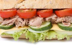 Tuna sandwich with vegetables and cheese isolated macro Royalty Free Stock Image
