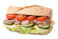 Tuna sandwich with vegetables and cheese isolated Royalty Free Stock Images