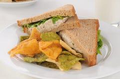 Tuna sandwich on whole wheat bread Royalty Free Stock Photos
