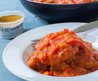Tuna on sauce Royalty Free Stock Image