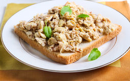 Tuna scrambled egg Royalty Free Stock Photos