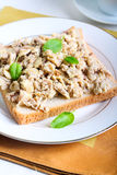 Tuna scrambled egg Royalty Free Stock Photography