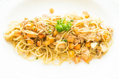 Tuna Spaghetti Imagen de archivo libre de regalías