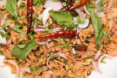 Tuna spicy salad Stock Images