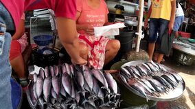 Tuna street vendor selling fish. Laguna, Philippines - July 16, 2015: Tuna fish sold at street wet market due to lack of market facilities stock footage