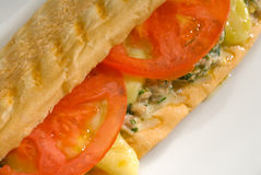 Tuna tomato and cheese grilled panini sandwich Royalty Free Stock Images