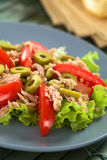 Tuna, Tomato and Green Olive Salad Royalty Free Stock Photo