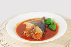 Tuna in tomato sauce Stock Images