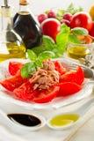 Tuna and tomatoes Stock Photography