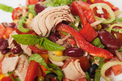 Tuna and vegetable salad Stock Image
