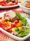 Tuna and vegetable salad Royalty Free Stock Image