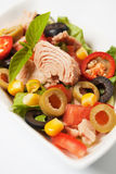 Tuna and vegetable salad Stock Photo