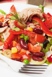 Tuna and vegetable salad. Tuna salad with olives, tomato, kidney bean, corn and lettuce Royalty Free Stock Photos