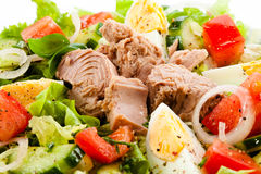 Tuna and vegetable salad Royalty Free Stock Photos