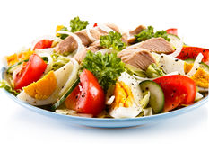 Tuna and vegetable salad Stock Images