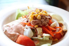 Tuna and vegetable salad in dish. Royalty Free Stock Photography