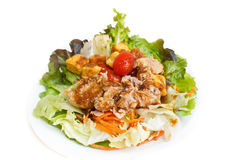 Tuna and vegetable salad. Royalty Free Stock Photography