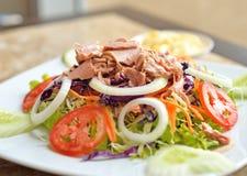Tuna and vegetable salad Royalty Free Stock Photos
