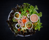 Tuna and vegetables salad Royalty Free Stock Images
