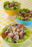 Tuna, Vitaminic green and Greek salad with feta Royalty Free Stock Image