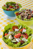 Tuna, Vitaminic green and Greek salad with feta Royalty Free Stock Photography