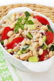 Tuna and White Bean Salad Stock Photography