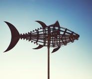 Tuna wind vane Stock Photography