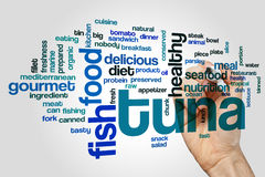 Tuna word cloud Royalty Free Stock Photography