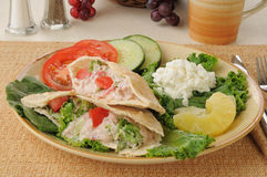 Tunafish pita sandwiches with cottage cheese Royalty Free Stock Image