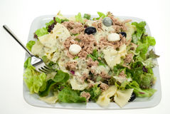Tunafish salad Stock Photography