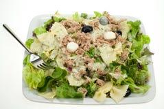 Tunafish salad Stock Photography