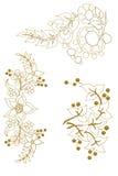 Tuncay, ivy, frame, creeper, v Stock Photos