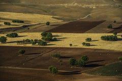 Tunceli jord och skörd Arkivbild