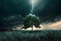 Tunder und Beleuchtung Stockfotografie