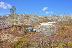 Tundra βουνών στο Lapland στοκ εικόνες με δικαίωμα ελεύθερης χρήσης