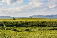 Tundra λόφων στοκ φωτογραφία με δικαίωμα ελεύθερης χρήσης