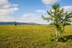 Tundra λόφων στοκ εικόνα με δικαίωμα ελεύθερης χρήσης