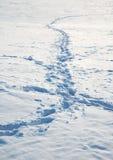 tundra μονοπατιών στοκ φωτογραφίες με δικαίωμα ελεύθερης χρήσης