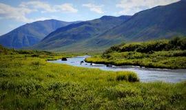 Tundra ρεύμα κοιλάδων στη σειρά βουνών ταφοπετρών στοκ φωτογραφία με δικαίωμα ελεύθερης χρήσης