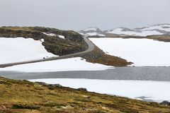 Tundra της Νορβηγίας καλοκαίρι στοκ φωτογραφία με δικαίωμα ελεύθερης χρήσης