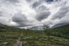 Tundra τοπίο στη βόρεια Σουηδία Στοκ Φωτογραφία